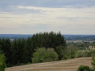 Uitzicht over heuvels en bossen